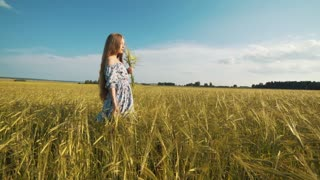 A woman in a short dress, in a field of wheat, in the hands of ears.