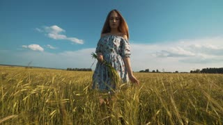Beautiful girl posing on sunlit wheat field. Freedom concept. Happy woman having fun outdoors in a wheat field on sunset or sunrise.