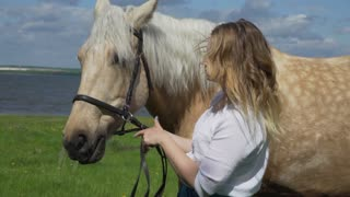 Girl caressing a white horse in the ranch on a sunny day