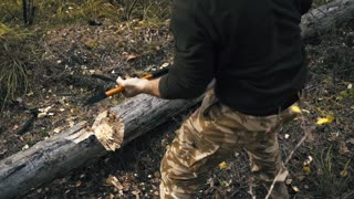 lumberjack in the woods, chop wood with an ax