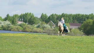 Young beautiful woman rider riding a white horse on the field