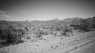 TRAVELING THROUGH THE DESERT.  STEADY CAM POV SIDE VIEW IN B & W.