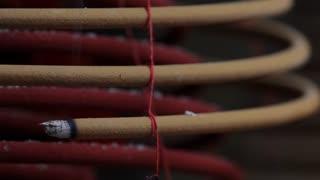 CU Burning incense coil at Man Mo Temple / Hong Kong