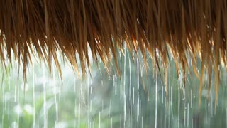 CU Rain pouring from thatched roof of hut