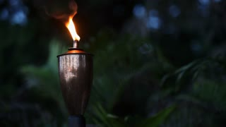 CU Torch burning in forest at night / Indonesia