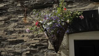 MH LD Potted Flowers Hanging from Stone House / Cornwall, England, UK