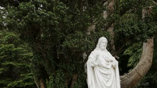 MH LD Stone Statue of Jesus Christ in front of Tree / Ireland