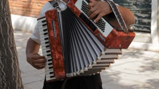 MH TU Man Playing Accordion on Sidewalk / Venice, Italy