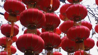 MS LA Red Chinese lanterns hanging as decoration / China