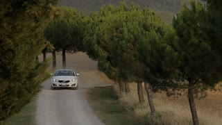 WS Car driving up rural road lined with cypress trees / Tuscany, Italy