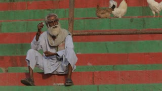 WS Elderly Indian man sitting on colorful steps with chickens / India