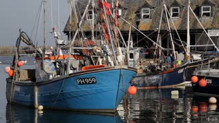 WS Fishing Boats in Harbour / Cornwall, England, UK