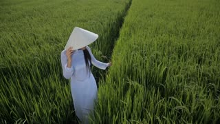 WS HA LD Young Woman Wearing Ao Dai Standing in Rice Paddy / Vietnam