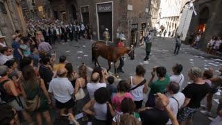 WS HA PAN Crowd Following Winning Horse of Palio down Street / Siena, Italy