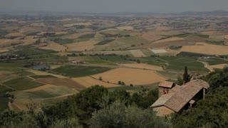 WS HA PAN Rural landscape / Tuscany, Italy