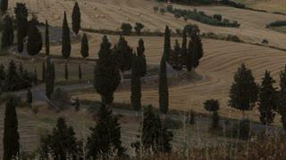 WS HA Rural road with cypress trees / Tuscany, Italy