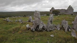 WS LD Ruined Stone House / Ireland