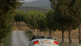 WS PAN Car driving down rural road lined with cypress trees / Tuscany, Italy