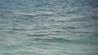 WS SELECTIVE FOCUS Small waves on ocean surface