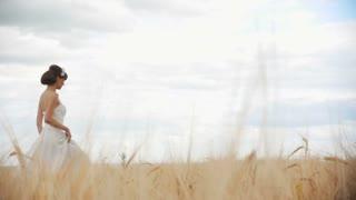Bride Running Through The Rye Field