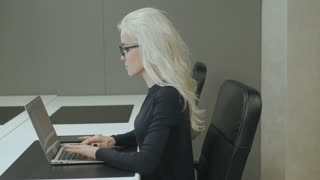 Young Pretty Business Woman With Laptop 3