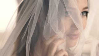 Beautiful Bride in a Veil Smiling