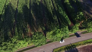 Aerial view. Cars driving on country road