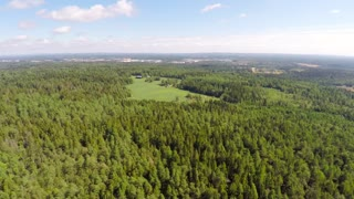 Flying high over the pine woods and farm