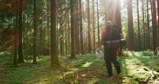 Active male hiker walking with map in beautiful forest at dawn