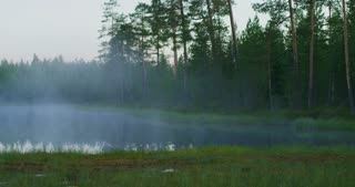 Beautiful lake in green finnish forest with morning fog