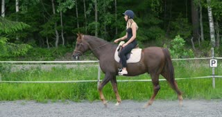 Young female rider on her arabian horse at farm