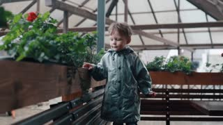 A cute little boy leaning on a fence with plants, sitting on a bench. Rain is falling. Slow mo