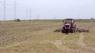 An agricultural tractor, plowing a field for sowing, moving to the camera. Birds are flying around
