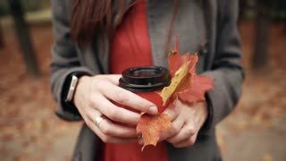 Autumn. hands of young stylish woman holding a paper cup of coffee and beautiful maple leaves 4k