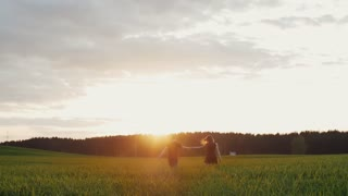 Beautiful back view of young couple walking in field at sunset. They move away from camera, hold hands. Slow mo