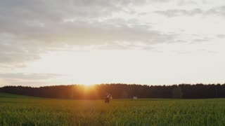 Beautiful sunset in nature. Lovers stand embracing each other and kiss in a field. Forest at the background. Slow mo