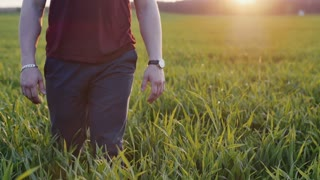 Close-up of lovers taking each other by the hand. Man and woman walk in long grass at sunset. Slow mo, steadicam shot.