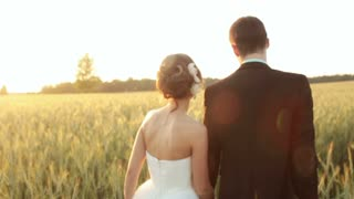 couple bride and groom at sunset in a wheat field