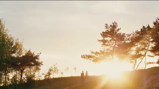 Couple walking on a hill holding hands at sunset in nature. Sun rays shine. Natural landscape, trees, bushes. Slow mo