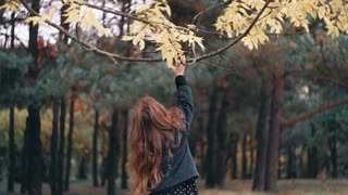 cute, funny, cheerful little girl tears yellow leaves of a tree in the amazing autumn park