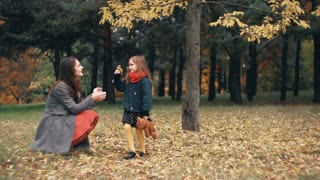 cute funny little girl gives her mother collected her a bouquet of wildflowers in the amazing autumn park slow motion
