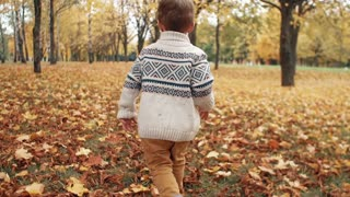 cute happy smiling little boy running, playing, having fun and posing in the amazing autumn alley in park slow motion