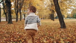 cute little boy running through the amazing autumn alley in the park slow mo