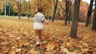 cute little boy running through the amazing autumn alley in the park