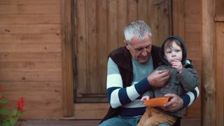 Cute little boy sitting on grandfather s lap and eating berries from the orange bowl. Old man feeding grandson. 4K