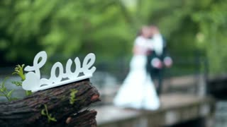 Decorative inscription love with bride and groom