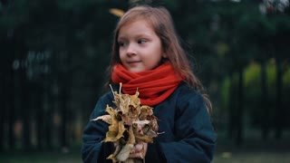 funny, cheerful cute little girl close-up collects yellow autumn leaves in park slow motion