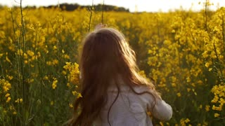 Girl standing amidst of field at sunset. Slow mo
