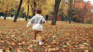 happy cute little boy runs to his mother through the amazing autumn alley in the park slow motion