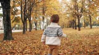happy funny cute little boy running over fallen leaves through the amazing autumn alley in the park slow mo